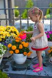 Little toddler girl watering flowers with a Stock Photos
