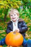 Little toddler kid boy with big orange pumpkin in autumn garden. cute child in fashion clothes having fun with huge. Vegetable. Traditional thanksgiving or stock images