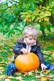 Little toddler kid boy with big pumpkin in garden Stock Photos