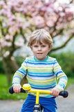 Little toddler kid boy riding with his first bike Royalty Free Stock Photography