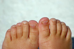 Little toes royalty free stock image