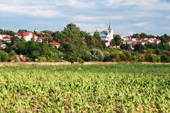 Little town in Europe. View of a small town in Poland with beet field in foreground stock photo