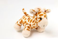 Little giraffe plushie isolated on white background with shadow reflection stock photos