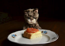 Little toy kitten in front of plate with fish sandwich Royalty Free Stock Photos