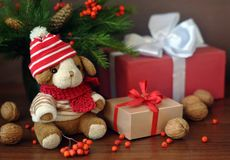 Little toy puppy, christmas tree branches, nuts and some gifts on old tree background. Little toy puppy in a knitted hat, christmas tree branches, nuts and some Royalty Free Stock Photos