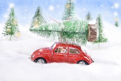 Little toy red car carrying christmas tree on the top Stock Image