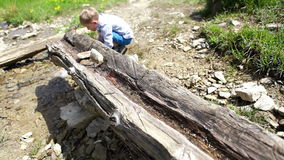 A little traveler on the mountain walk stopped by near the creek to drink stock footage