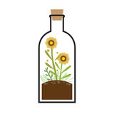 Little Tree In A Bottle Stock Photography