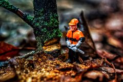 Little tree cutter royalty free stock photo