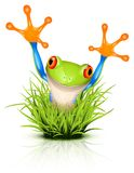 Little tree frog on grass. Little tree frog on reflective grass stock illustration
