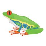 Little tree frog  illustration isolated on white background Stock Photo