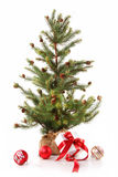 Little tree with red ribbon gifts on white Royalty Free Stock Image