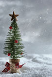 Little tree with snow background Royalty Free Stock Photography