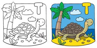 Little turtle coloring book. Alphabet T. Coloring picture or coloring book of little funny turtle on the sand near the palm. Alphabet T Royalty Free Stock Photos