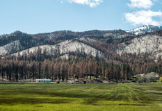 Little Valley Fire Stock Photography