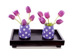 Little vases with purple tulips Stock Photography