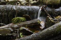 little vattenfall arkivbild