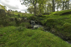 little vattenfall arkivfoto