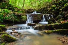 little vattenfall Arkivfoton