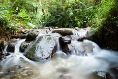 Little vattenfall i skogen Arkivfoto