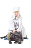 Little vet sitting on a dog Royalty Free Stock Images