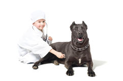 Little veterinarian Stock Photography