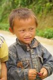 Little Vietnamese boy Stock Photo