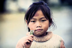 Little Vietnamese girl. The portrait of the vietnamese girl with a flower on a street in Hanoi, Vietnam stock photography