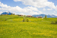 Little village in Germany with blooming meadow Stock Image