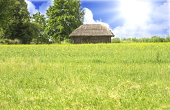 Little village house in summer, Lithuania Stock Photography