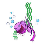 Little violet swimming fish. With water bubbles and green water plants Stock Image
