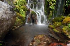 Little Waitonga Falls Royalty Free Stock Photos