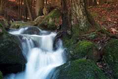 Little waterfall Royalty Free Stock Images