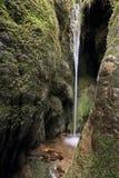 Little Waterfall Stock Photos