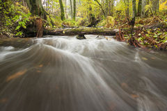 Little waterfall in autumn forest royalty free stock photo