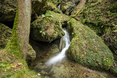 Little waterfall flows through a fairy tale forest Royalty Free Stock Photos