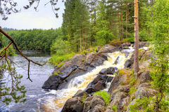 Little waterfall on the forest small river in Karelia Stock Images