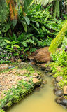 Little waterfall garden. Little waterfall in the garden Stock Image