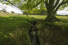 Little waterfall going through the countryside. In the peak district Royalty Free Stock Photography