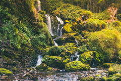 Little waterfall in the jungle. A little waterfall in the jungle Stock Photo