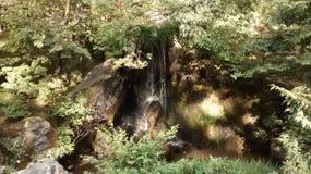 Little waterfall Stock Image