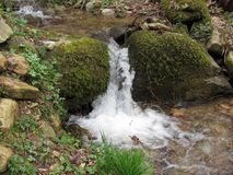 Little waterfall by mossy rocks in the forest . Tuscany, Italy.  Stock Photo