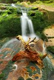 Little waterfall Stock Images
