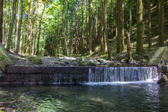 Little waterfall near Camaldoli Royalty Free Stock Images