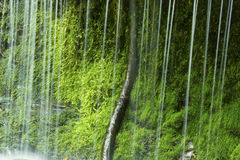 Little waterfall of rivulets with moss on a ledge,Connecticut. Royalty Free Stock Photo