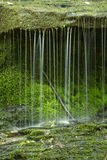 Little waterfall of rivulets with moss on a ledge,Connecticut. Stock Photo