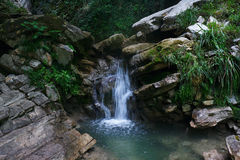 Little waterfall among the rocks in mountain forest Stock Photography