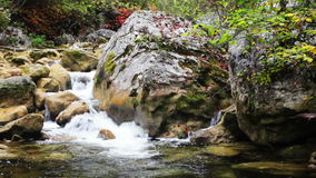 Little waterfalls in a peaceful wood. stock video footage