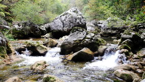 Little waterfalls in a peaceful wood stock video footage