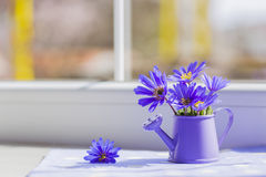 Little watering can with spring flowers bouquet near the window Stock Photography